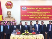 Thai Nguyen boosts organic farming