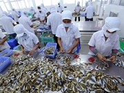 Seafood firms urged to register online