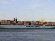 Giant Triple-E container ship docks at Cai Mep int'l terminal