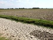Ecosystem-based climate change adaptation reaps fruits