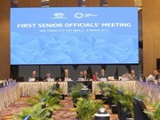 APEC SOM1 continues agenda, discussing cooperation plans