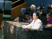 ECOSOC: Vietnam calls for continued resources for development