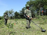 Vietnam, US work to address post-war consequences