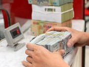 Reference exchange rate goes up 12 VND