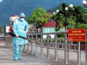 Da Nang city on alert for H7N9 outbreaks