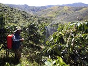 Insiders talk climate, integration-adapted coffee industry