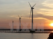 Ninh Thuan aims to become clean energy centre