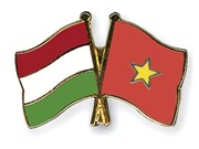 Hungary's National Day marked in Ho Chi Minh City