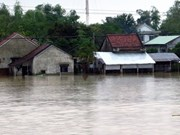 Vietnam forecast to see more flash floods, landslides in 2017