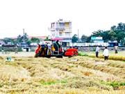 Khanh Hoa develops rural areas