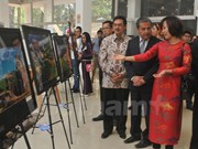 Vietnam attends international cultural week in Mexico