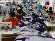 Binh Duong lures big FDI projects in textile, infrastructure