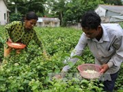 Tra Vinh assists local Khmer population
