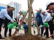 Toyota Vietnam joins hands in developing green schools