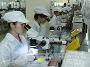 Foreign investment key to Vietnamese growth: experts