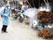 Ministry launches national bird flu control programme