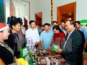 Herbal medicine hoped to be part of economic development prioritie
