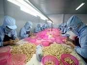 RCEP brings new hope for Vietnamese businesses