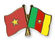 Vietnam bolsters partnership with Cameroon