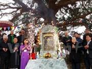 Conference promotes heritage tree preservation