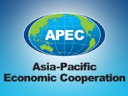 Software designers to compete in APEC app challenge in Hanoi