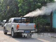 Hanoi enhances prevention of dengue fever