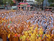 Activities held to celebrate Buddha's birth anniversary