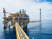 Thai oil firm suspends investment in Indonesia