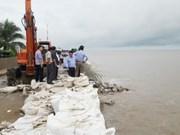 Bac Lieu: 340 billion VND needed to repair sea dyke erosion