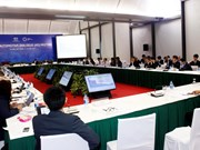 Development gap hinders linkages in APEC auto industry