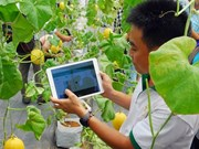 Nutifood invests in Dak Lak hi-tech agriculture