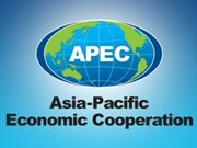 Software developers to compete in APEC app contest