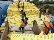 Imported DAP fetiliser products under investigation