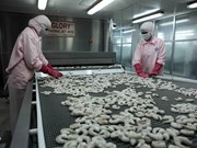 Experts stress a must for shrimp value chain