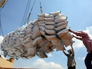 Vietnam, Bangladesh extend rice trade deal