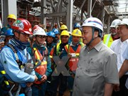 Thai Binh 1 thermal power plant joins national grid