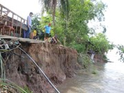 Mekong Delta struggles with erosion