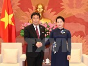 NA Chairwoman: Vietnam treasures ties with Japan