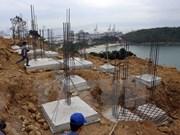 Harmonious tourism, environment protection urged in Son Tra Peninsula
