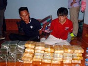 Vietnam, Laos bust major drug ring