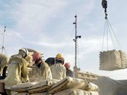 Cement export tax burdens domestic firms