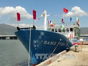 Steel-coated ships support Binh Dinh fishermen