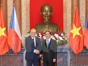 Vietnam, Czech Republic agree to foster ties across fields