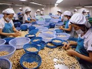 Vietnamese exporters updated on US import regulations