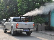 Dengue fever rises in Hanoi