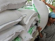 Cambodia's rice export hits record high in first five months