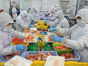 Australia – potential market for Vietnam goods