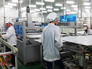 Bac Giang attracts 77 investment projects in five months