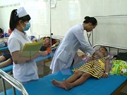 Health ministry urges proactive prevention of dengue fever