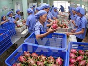 Fruit, vegetable exports grow strongly, exporters still worry